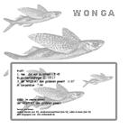 wonga-wirrwarr-oder-lahm